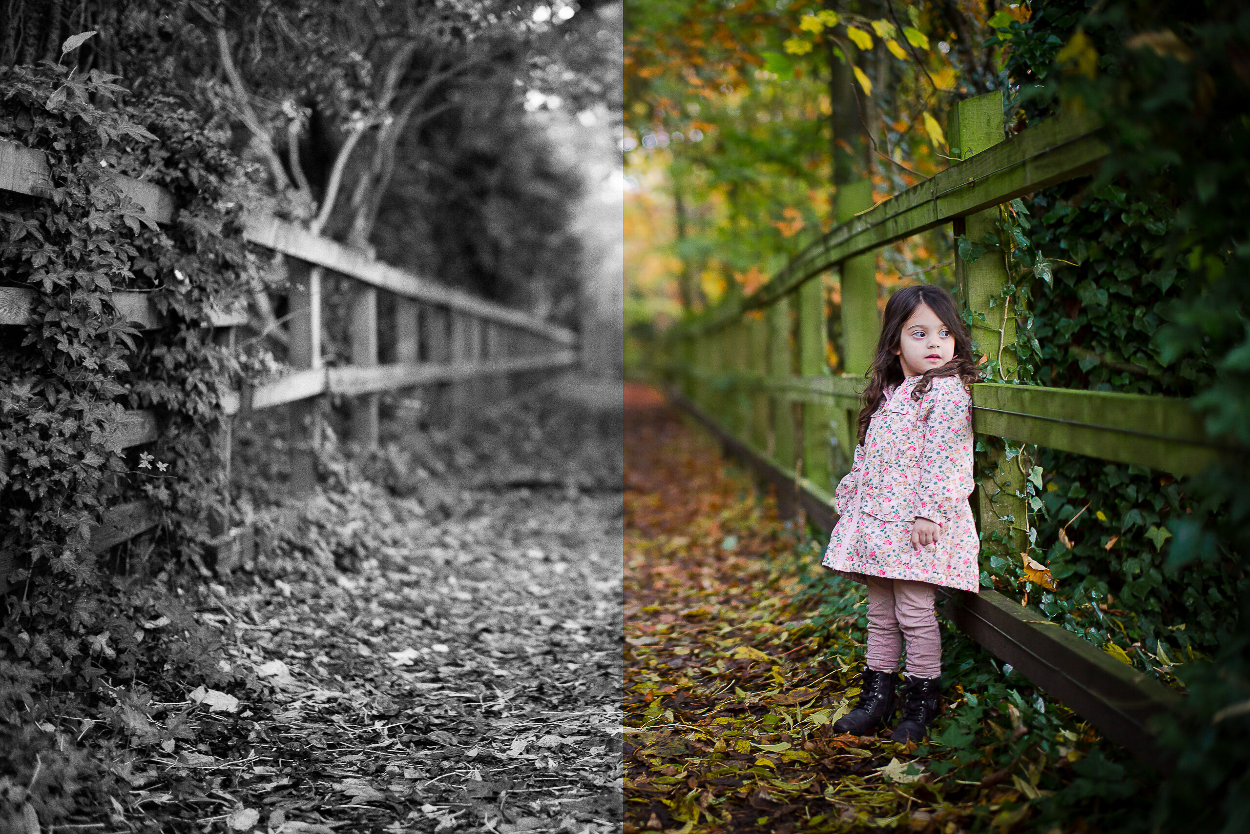 Workshop Gallery Lightroom Edit Process Monochrome Colour Autumn By Brett Leica Photographer